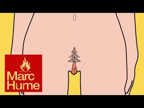 Pubic hairstyles